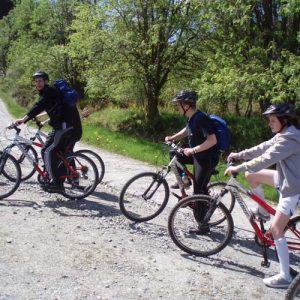 Mountain Bike Hire Go Country Adventure Aberfoyle